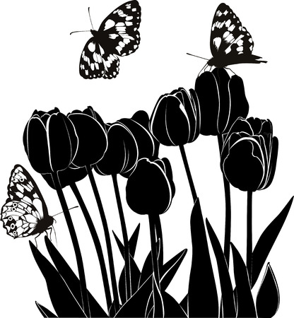 tulips Ilustracja