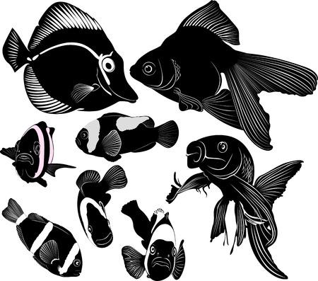 peces de acuario marino Ilustración de vector