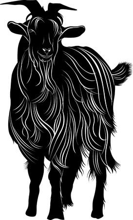 macho cabrio: cabra Vectores