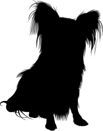 Papillon hond Stock Illustratie