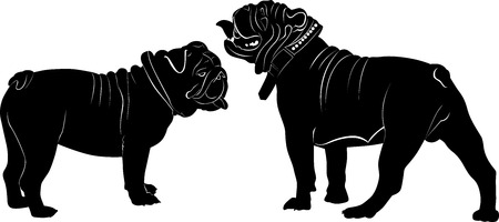 dog ear: bulldog