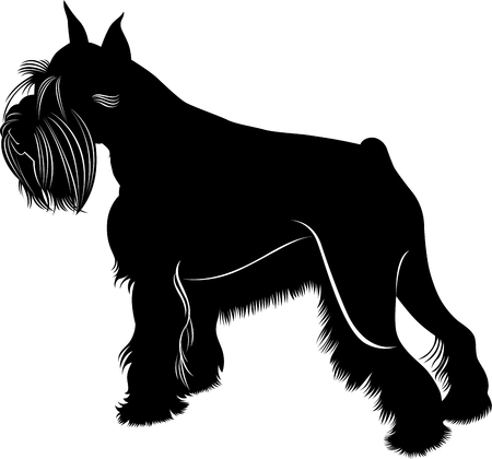 1 064 schnauzer stock illustrations cliparts and royalty free rh 123rf com schnauzer dog clipart schnauzer face clipart