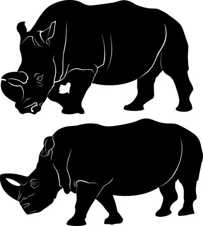 rhino: rhino Illustration
