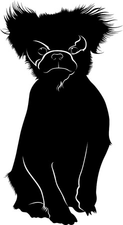 CHIN: Japanese Chin dog breed. Japanese Chin. Dog pet isolated on white background. Illustration