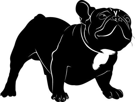 犬ブルドッグ。犬の品種ブルドッグ。白い背景で隔離犬ブルドッグの黒いシルエット。