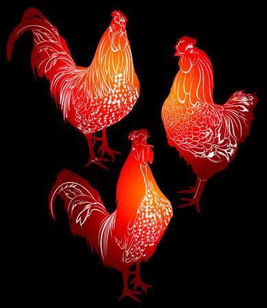 abstract animal: cock bird farm