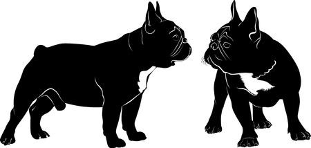 Hond van de Buldog. Het hondenras bulldog.Dog Bulldog zwart silhouet op een witte achtergrond.