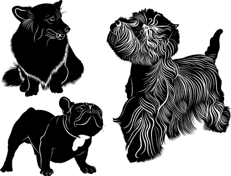 highland: dog collection. Cardigan Welsh Corgi. Welsh Corgi. Silhouette of a dog. Dog Bulldog. The dog breed bulldog.West Highland White Terrier