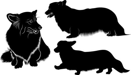 pembroke welsh corgi: Welsh Corgi. dog breed Welsh Corgi. Silhouette of a dog of breed Pembroke Welsh Corgi