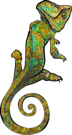 chameleon. Chameleon vector print. Vector illustration of a silhouette of a chameleon