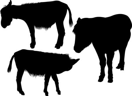 Donkey. Donkey Silhouette. donkey silhouette isolated icon vector illustration design Ilustração