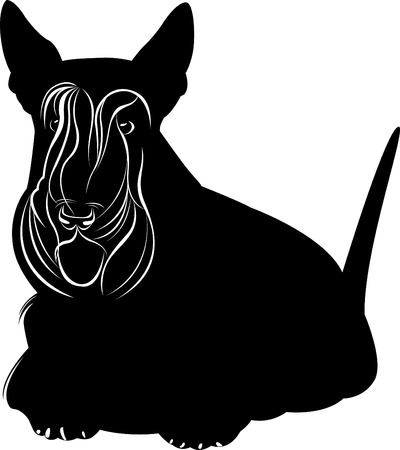 A Scotch Terrier. Scotch terrier minimalist image on a white background Иллюстрация