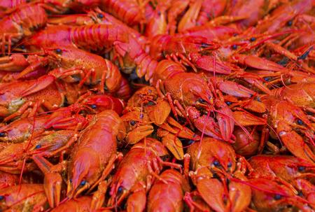 background of boiled crawfish