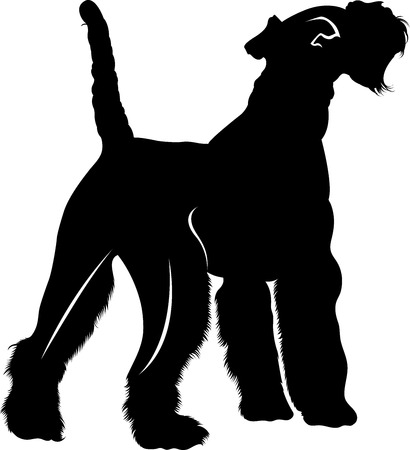 silhouette vector dog breed Fox Terrier