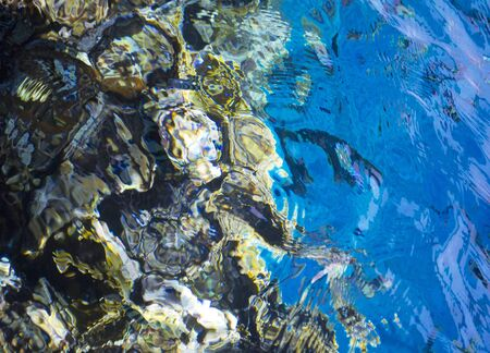 marine background Red Sea and corals Zdjęcie Seryjne