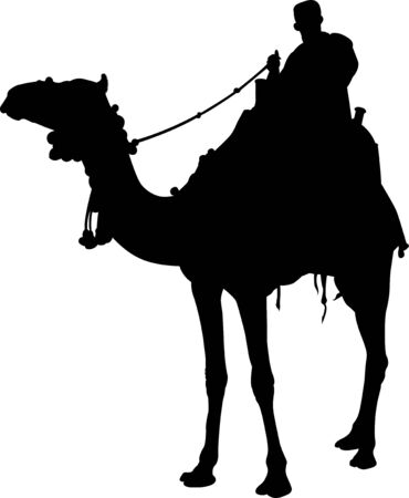silhouette of a camel rider vector isolated on white background