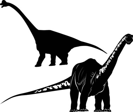 diplodocus dinosaur vector isolated on a new background