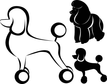vector silhouette of a dog poodle Ilustracja