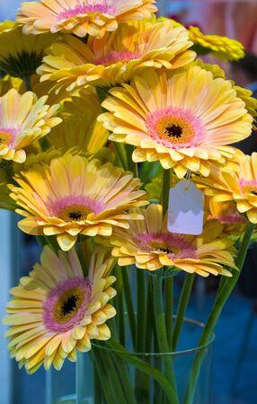 bouquet of yellow gerberas flowers in a vase