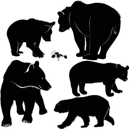 Set of silhouettes of bears. Vector Bears Collection