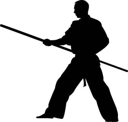 martial arts silhouette. Karate kick