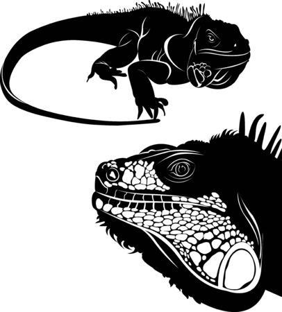 Lizard iguana set of silhouettes vector. Collection of animal icons