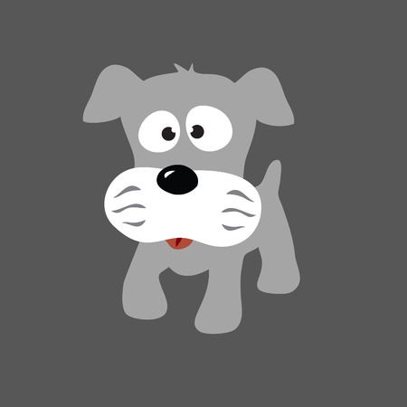Grey Puppy Schnauzer Vector Vector