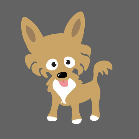 cartoon chihuahua: Long Hair Chihuahua
