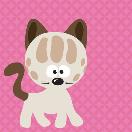 cat with cool background Vector