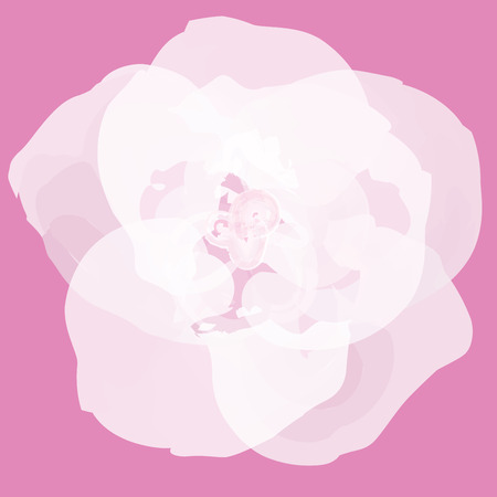 Flower abstract vector
