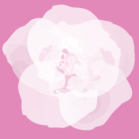 Flower abstract vector Reklamní fotografie - 24967548