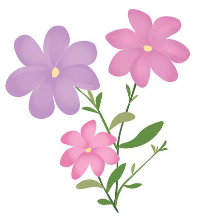 Flowers Reklamní fotografie - 35511571