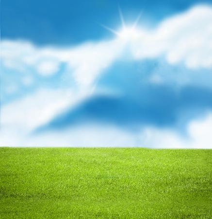 sky and grass: Sunny sky illustration Stock Photo