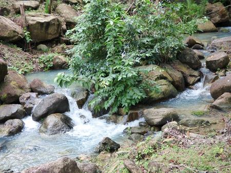 koh: Small river waterfall at Koh Phangan Thailand