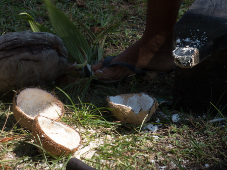 aceite de coco: Thailand Coconuts