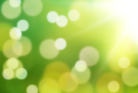 environmental awareness: nature green backgroud creative bukeh
