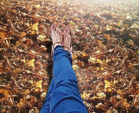 sandalias: Sandalias en hojas de otoño