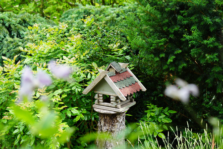 aviary: an aviary in the garden on an old sawed tree trunk
