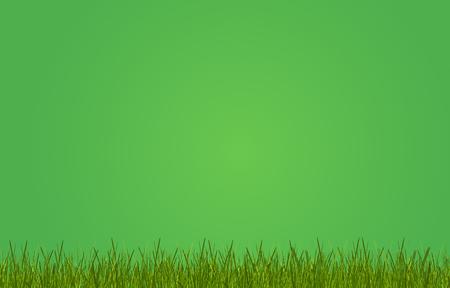 green grass meadow green background 3d-illustration