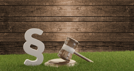 paragraph wooden gavel wood background and green field. 3d-illustration