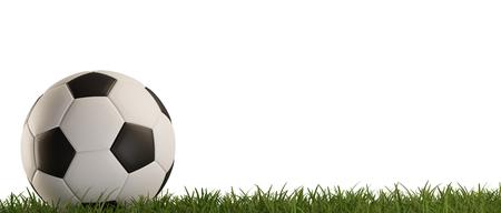 soccer ball green grass isolated 3d-illustration