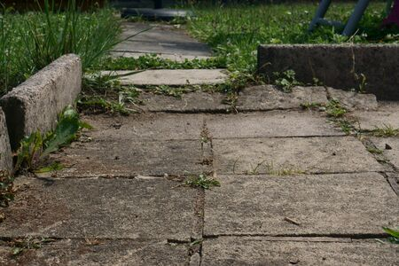 old stone slabs, an old path made of stone slabs in the garden