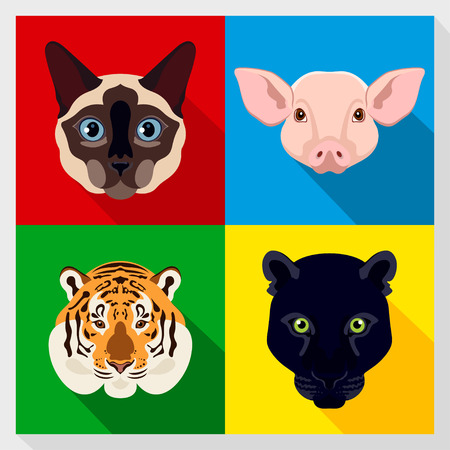 siamese: Set of animals with Flat Design. Symmetrical portraits of animals. Vector Illustration. siamese, cat, panther, tiger, pig. A set of symmetric vector portraits animals. Icon Set. Animal face.