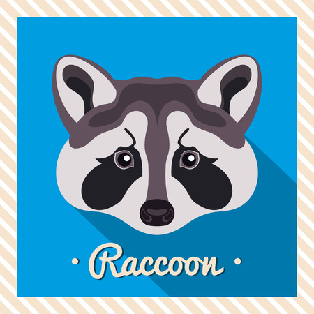raccoons: Vector portrait of a grey raccoon. Symmetrical portraits of animals. Vector Illustration, greeting card, poster. Icon. Animal face. Font inscription. Image of a raccoons face.