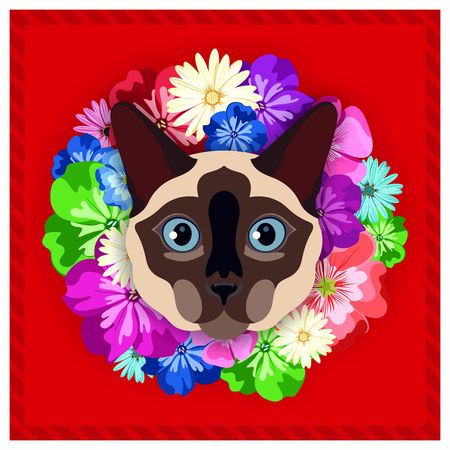 siamese cat: Vector portrait of a Siamese cat among the flowers. Beautiful, bright colors. Flower frame, rim. Symmetrical portraits of animals. Vector Illustration, greeting card, poster. Icon. Animal face. Font inscription. Image of a Siamese cat face.