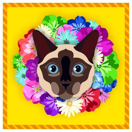 siamese: Vector portrait of a Siamese cat among the flowers. Beautiful, bright colors. Flower frame, rim. Symmetrical portraits of animals. Vector Illustration, greeting card, poster. Icon. Animal face. Font inscription. Image of a Siamese cat face.