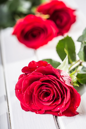 Rose. Red Roses. Bouquet Of Red Roses. Several Roses On Granite ...