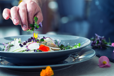 Chef in hotel or restaurant kitchen cooking, only hands. He is working on the micro herb decoration. Preparing vegetable salad with pieces of grilled chicken  meat - virgin sirloin. 写真素材