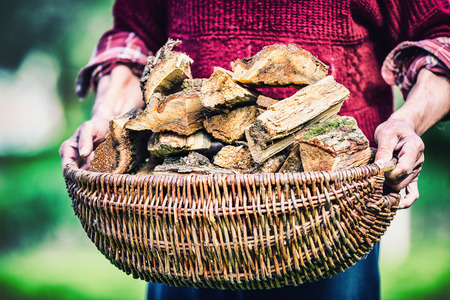 ignite: Pensioner farmer holding basket full of firewood. Man senior  holding wood out of a basket to ignite the fireplace. Stock Photo