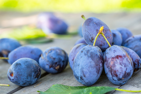 Plums. Blue and violet plums in the garden on wooden table. Stock Photo